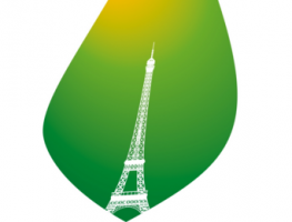AE_logo_COP-21_2015 11 23
